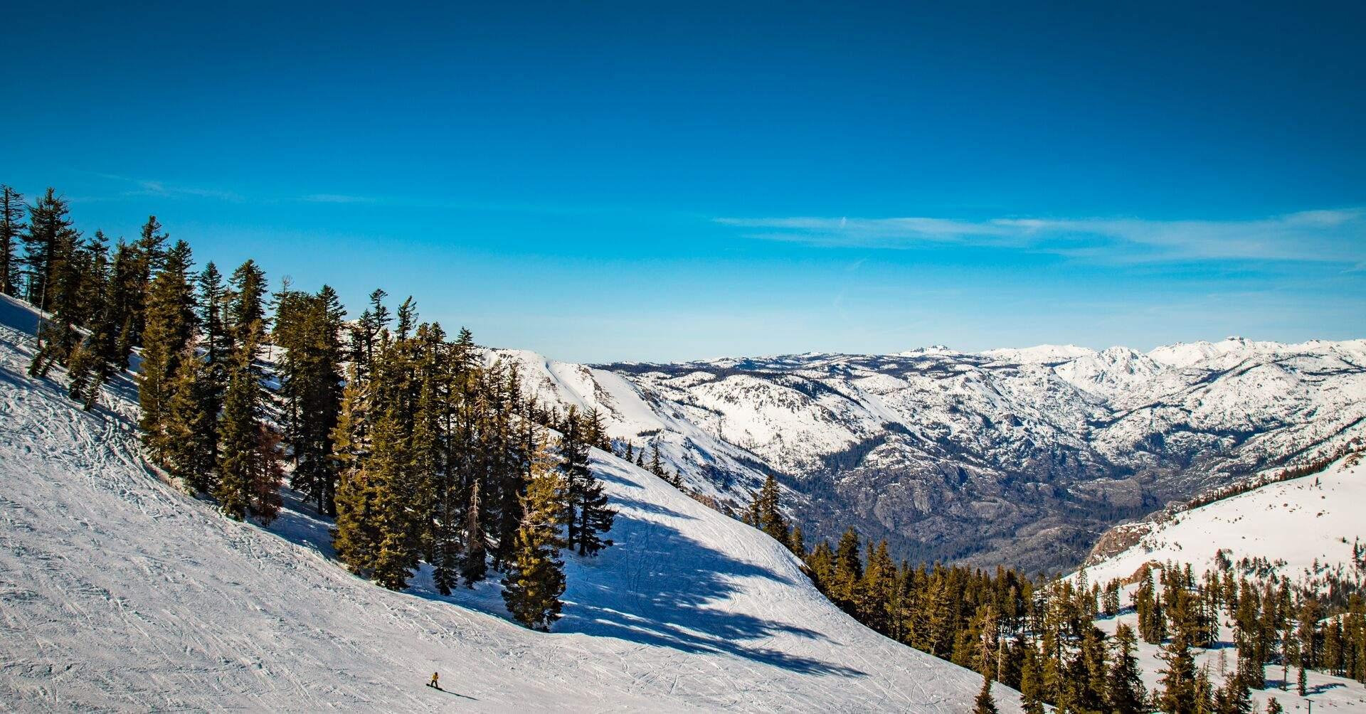 Bear Valley Ca >> News Bear Valley