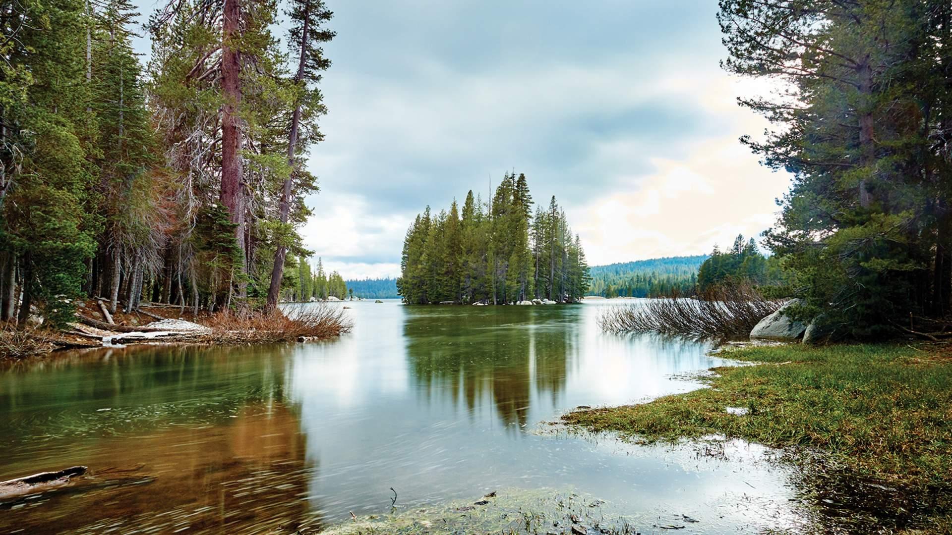 Bear Valley Ca >> Camping Bear Valley