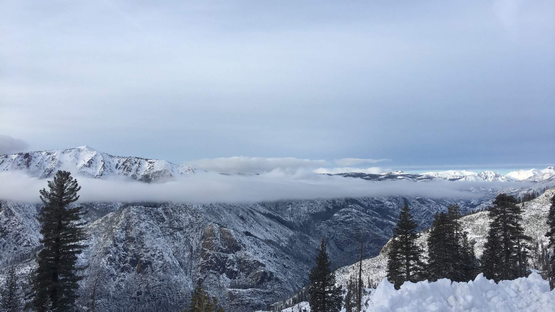 shuttle service - bear valley